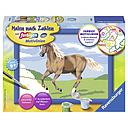 Ravensburger Paint by Numbers - Horse