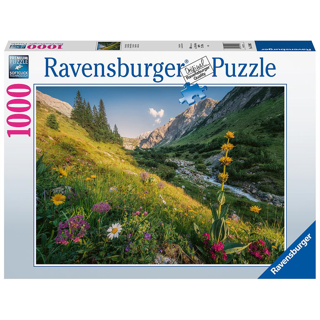 Ravensburger Puzzle 1000 pc Magical Valley