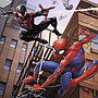 pusle_3x49_spiderman_080250V_1